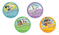 Image result for disney celebration buttons